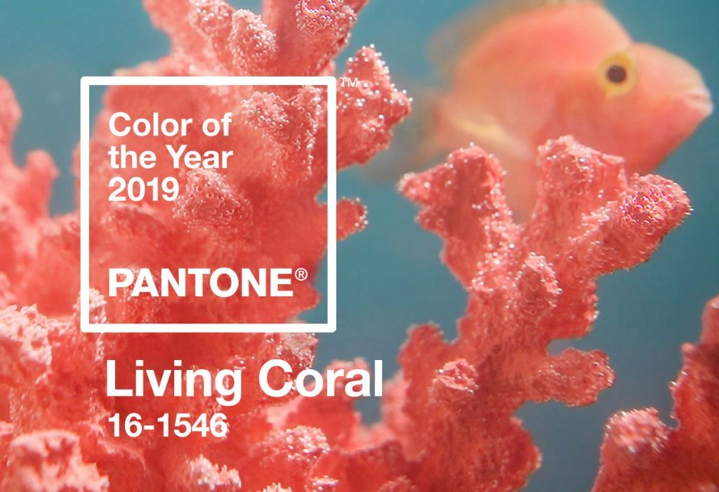 COLOR DEL AÑO PANTONE
